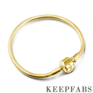 Snake Chain Bracelet with Clasp 14k Gold Plated Silver