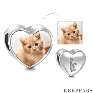Pet Cat Heart Photo Charm Silver