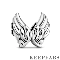 Wings Charm Silver
